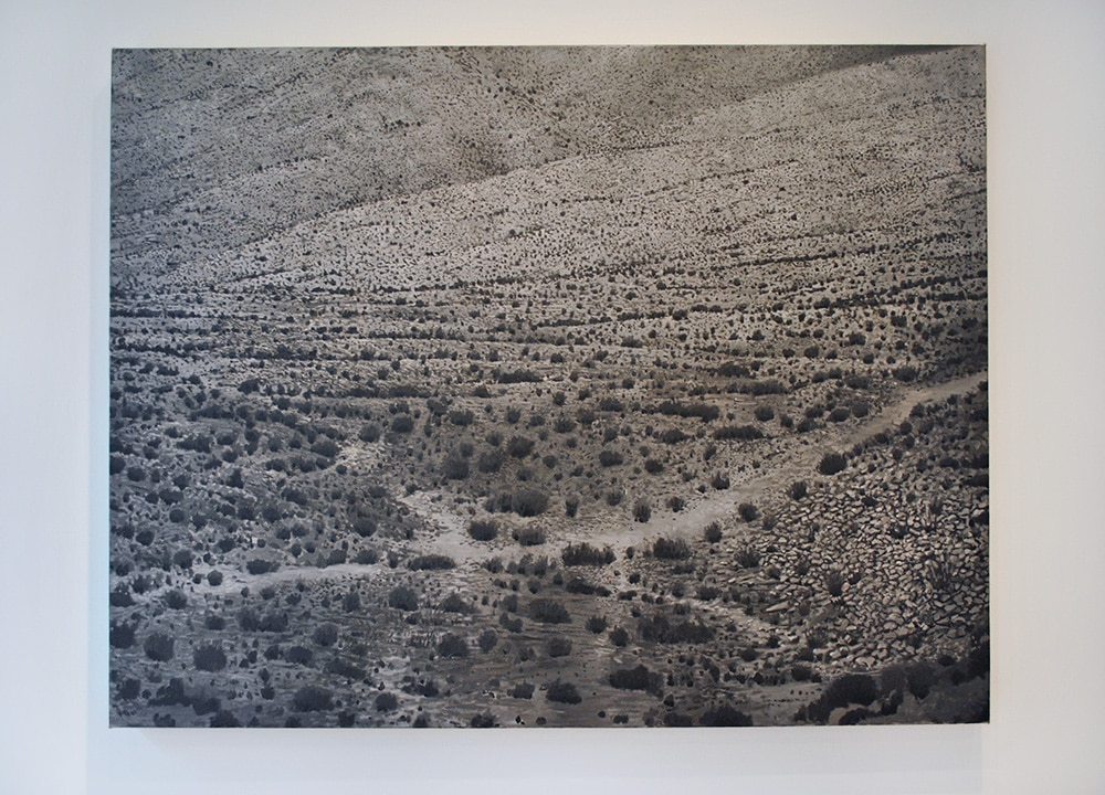 Chris Pfister Big Dry Landscape SM