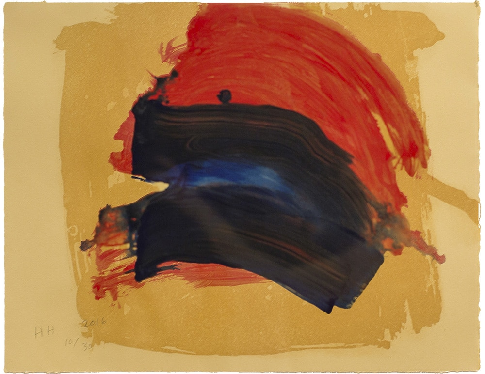 Howard Hodgkin - Dark Rainbow