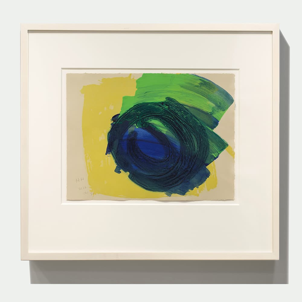 Howard Hodgkin Absolutely