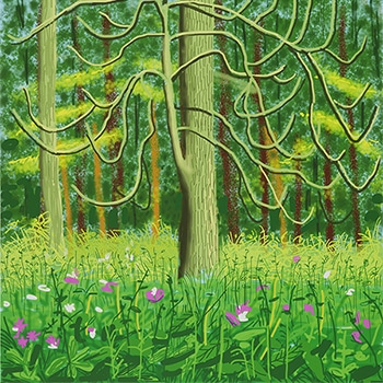 David Hockney iPad Drawing Tree in Green Forest